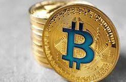Harga Bitcoin Hari Ini. Di Bitcoin Kita Percaya